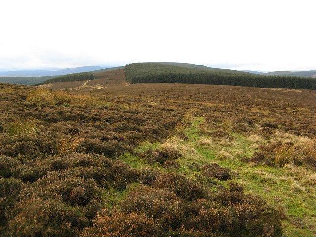 West ridge, Brown Knowe