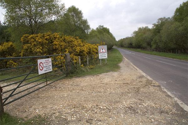 Gunnery signs, Povington Heath