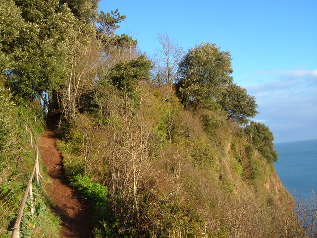 Goat path, Watcombe
