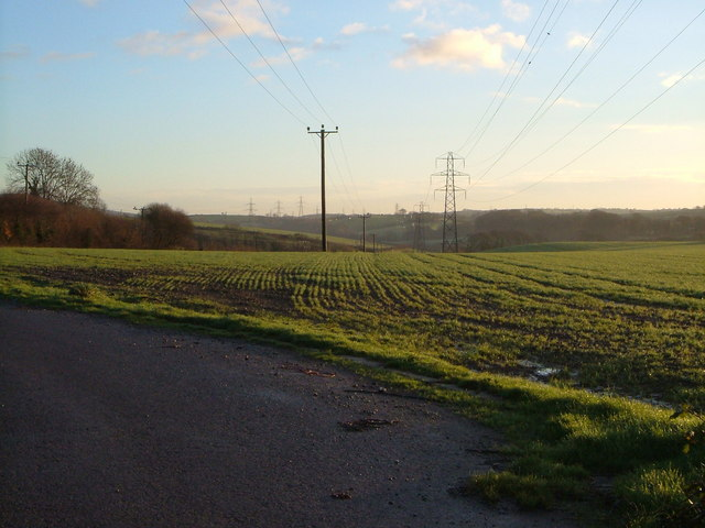 Field near Tuxton Farm