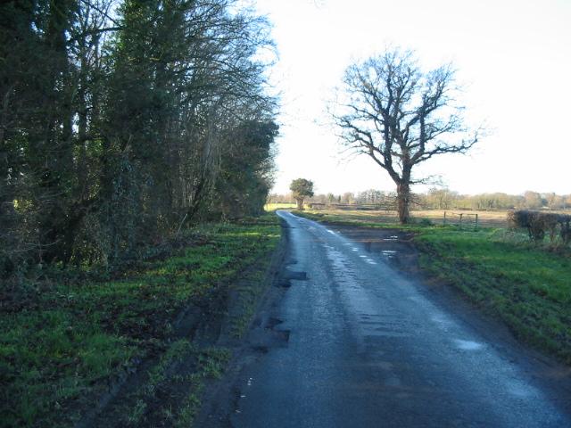 Moor Lane running alongside Sandhole Plantation