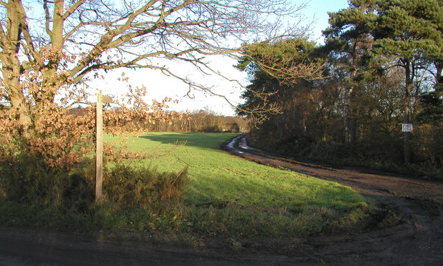 Public Footpath to Allerthorpe Common