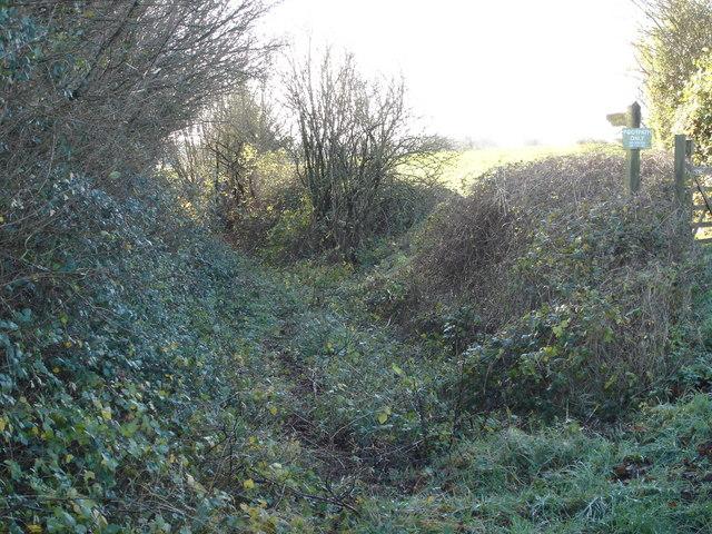 Footpath from Stapleton Farm