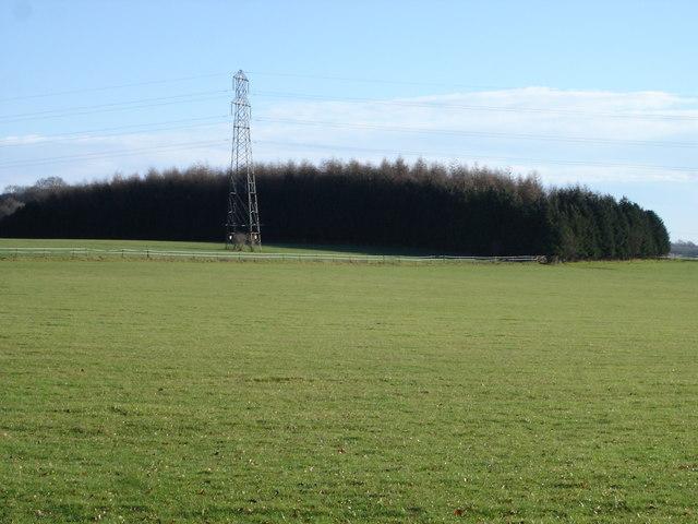 Downland near Stapleton Farm