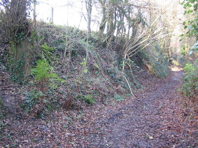 Footpath to Godswell Grove