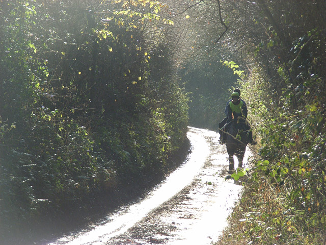 A lane at Ibstone