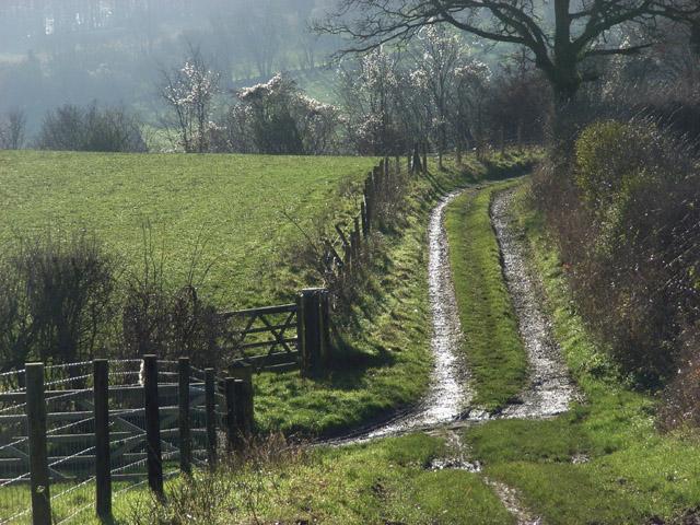 Bridleway near Northend