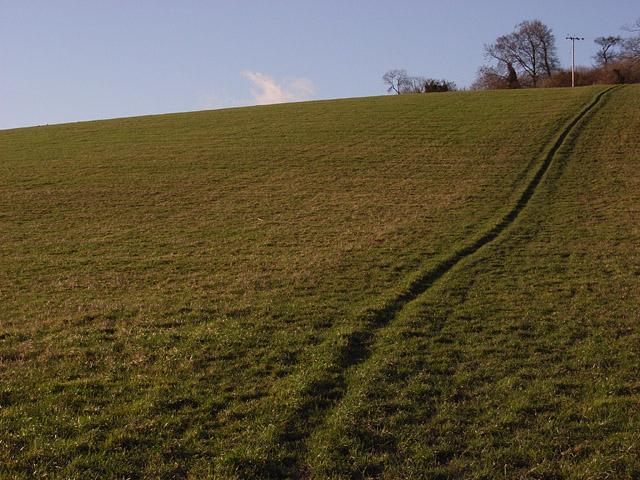 Farmland, Turville