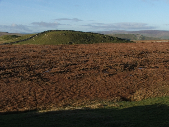 Above Stalling Busk Pasture.