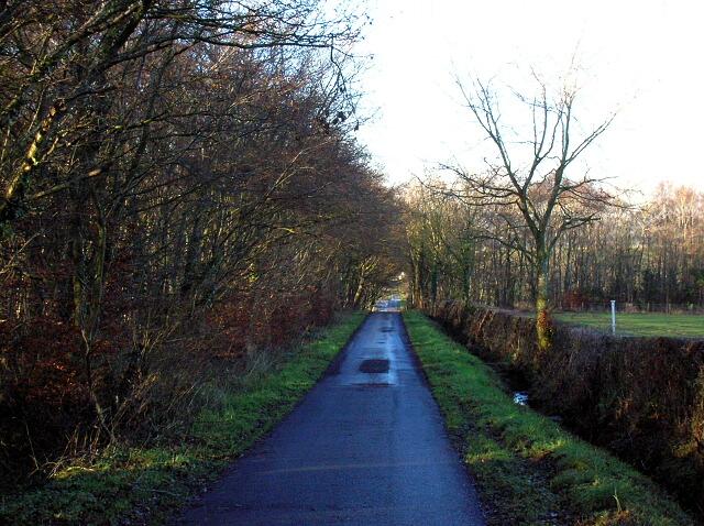 Minor Road Near High Wardneuk