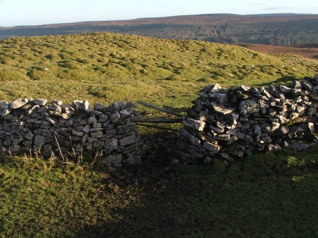 Gap in Drystone Wall .