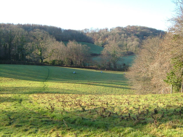 Heddon Wood from beside Rough Torrs