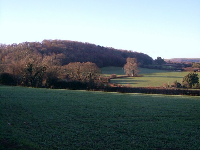 Heddon Wood from Rough Torrs