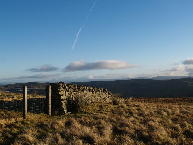 Fence and wall, Birkendale Knowe.