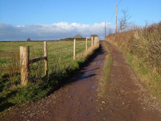 Track to Boscavene