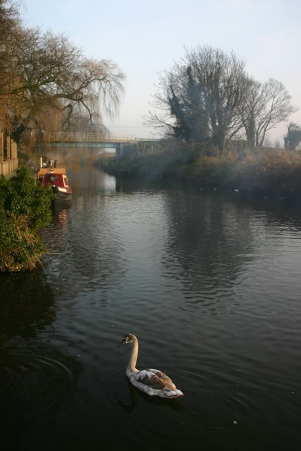 Judes Ferry