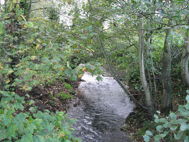 The Blackwater River