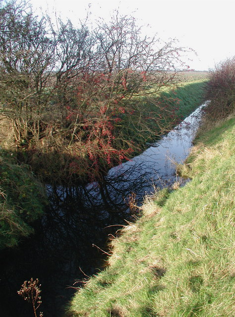 Cherry Cobb Sands Drain
