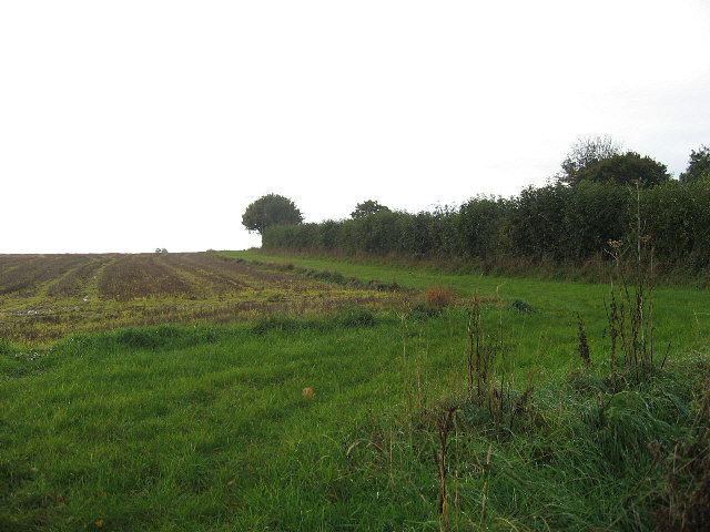 A Green Bridleway