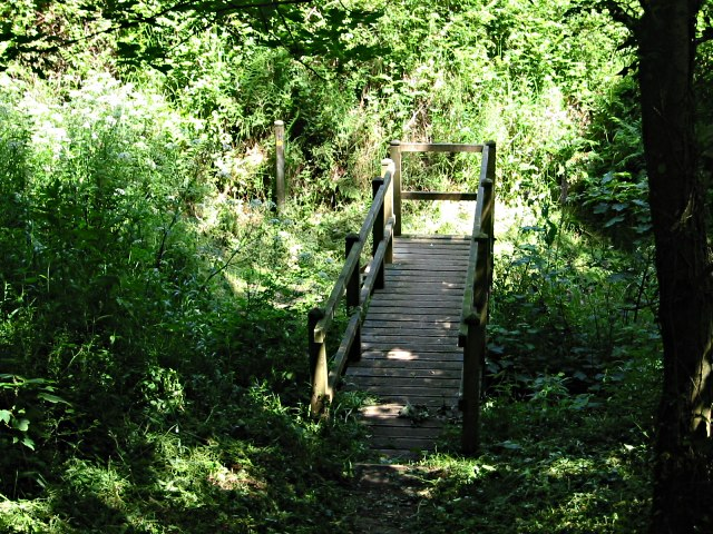Wooden Footpath Bridge
