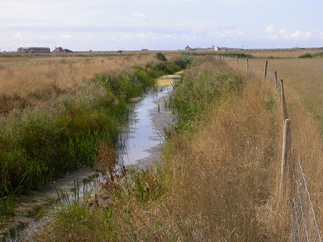 Scotney Petty Sewer, Lydd, Kent