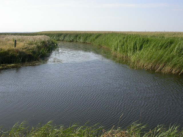 Confluence of Widney Fleet and Jury's Gut Sewer, Lydd, Kent