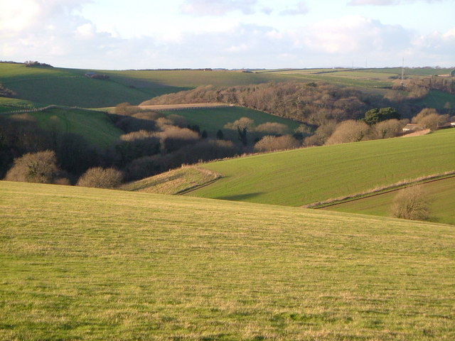 View near Netton