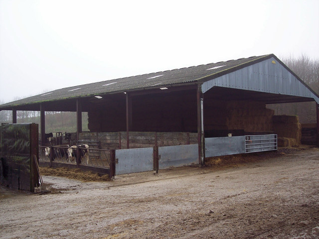 Cattle Barns