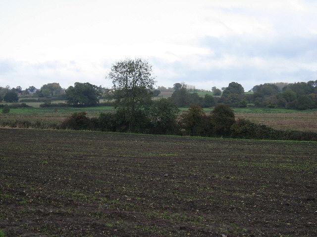 Towards Hingham
