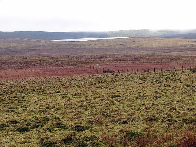 Pasture at Bryn y Fedwen