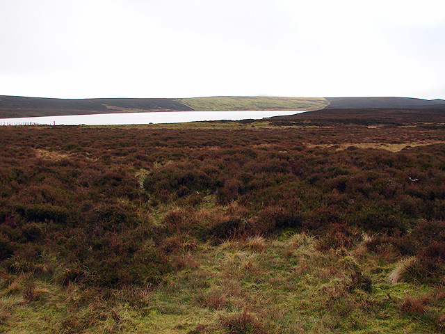Glaslyn Nature Reserve