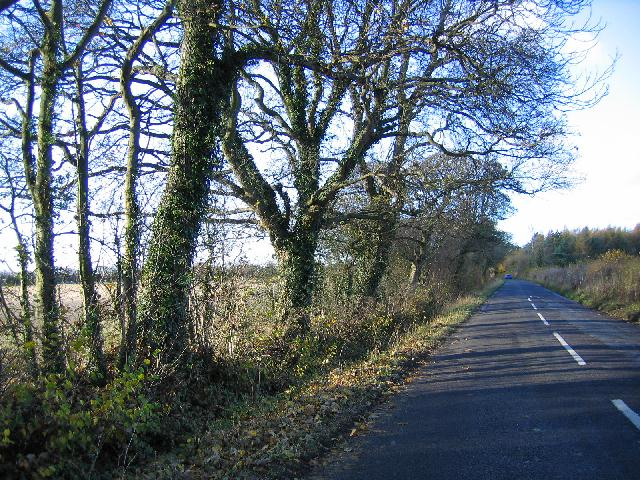 Heading towards Oaksey on the road from Somerford Keynes