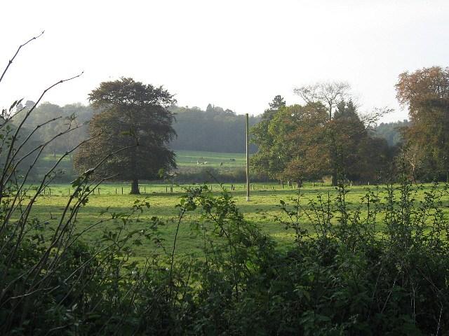 More Of Grange Farm