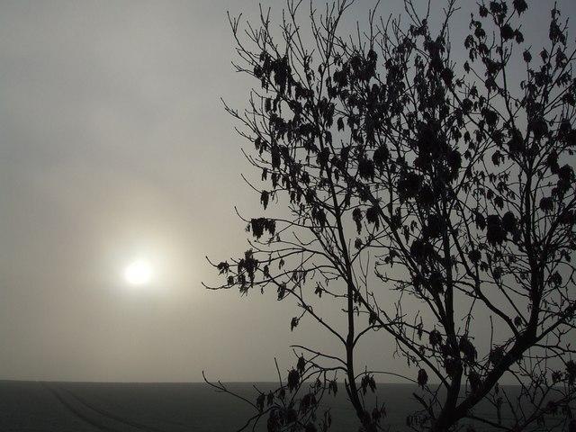Dull Sun