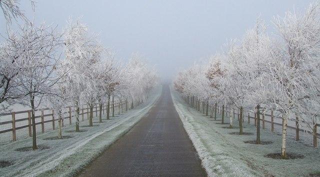 Lane to Upper Wingbury Farm