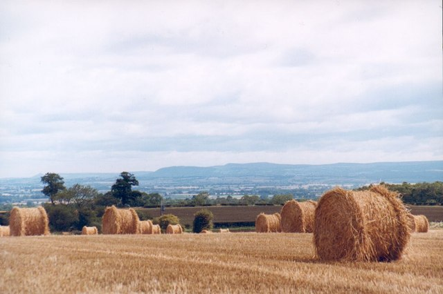 Looking across arable fields near Thornton Watlass