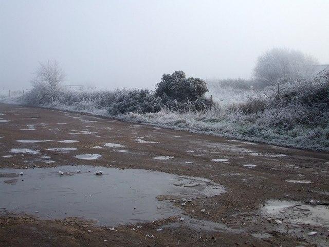 Frozen puddles, Cottesloe