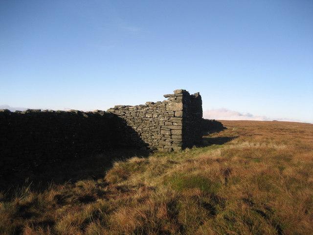 Ruin on Birks Fell