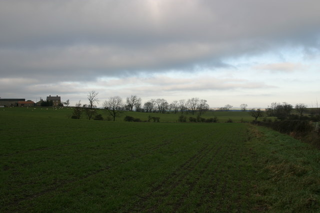 Looking towards Hold House from the track between Black Callerton and Ponteland