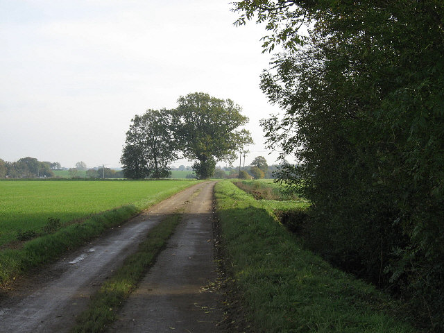 The Road To Willows Farm
