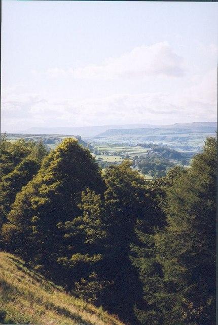 Cappelbank Wensleydale