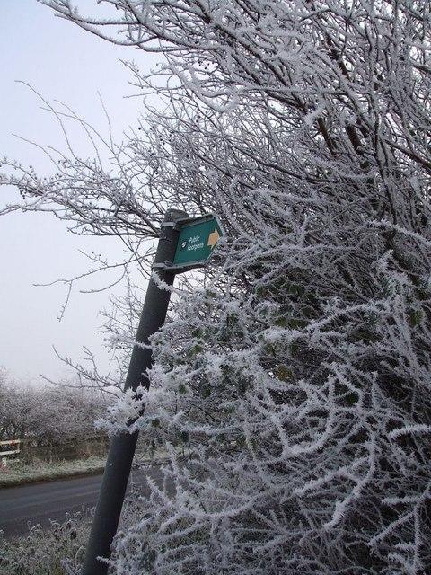 Signpost & Hoar Frost