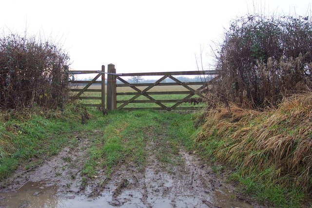 A muddy gateway, by the Welsh Way