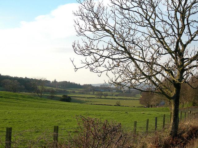 Towards Ashfield