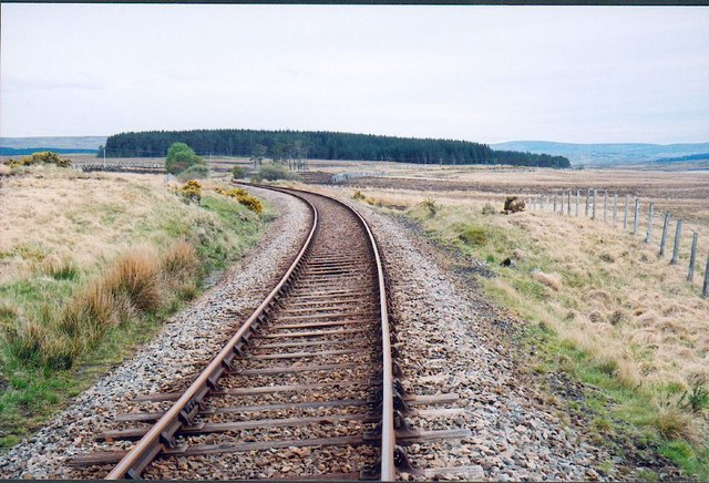 The Railway Line, Achintool Forest, Sutherland