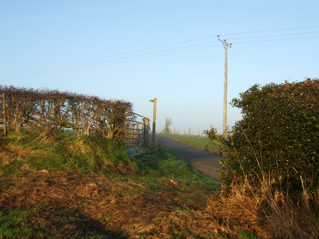Footpath to Bradley Moor.