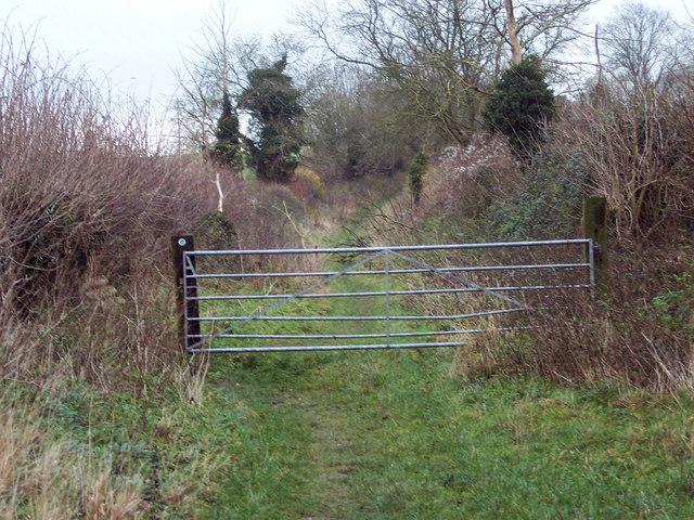 Faulston Down Bridleway