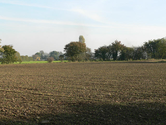 A Field By Cuthroat Lane
