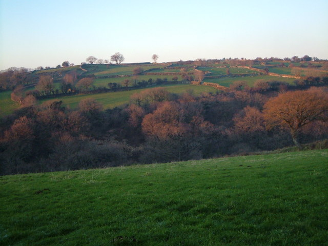 Tavy valley at Horndon