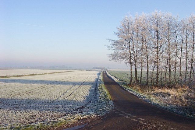Frosty view along Folly's Drove